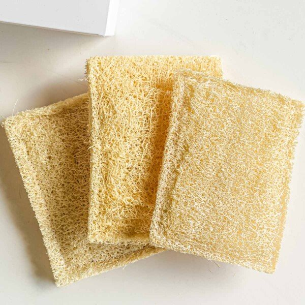 Top down view of three loofahs