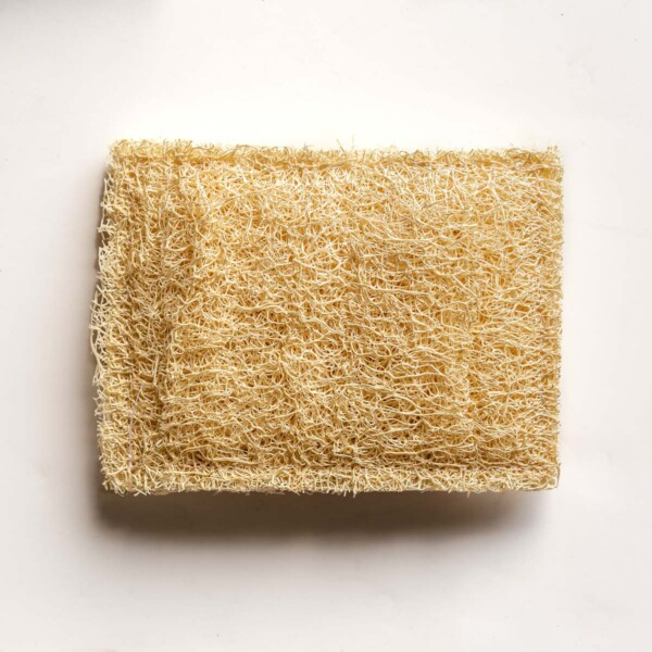 A top down view of one loofah